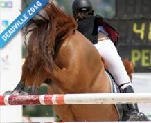 cheval3.jpg